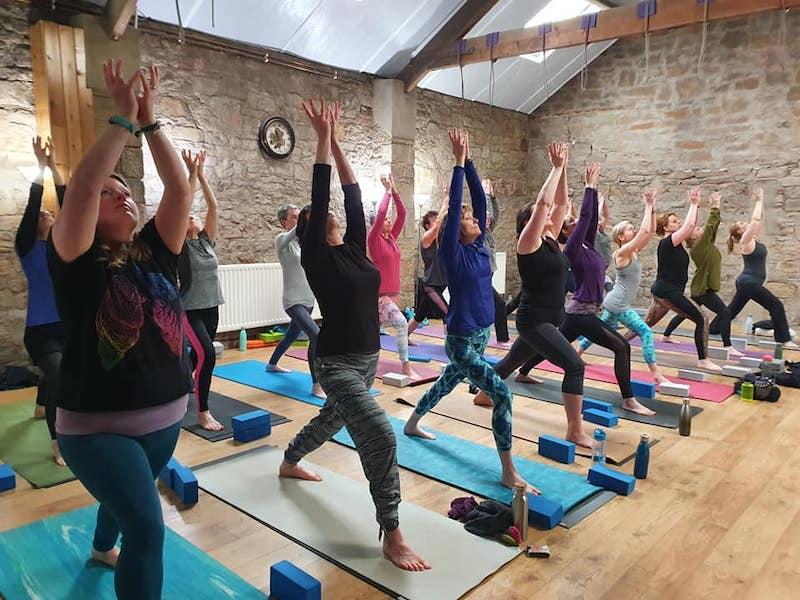 Wild Core Flow Yoga image